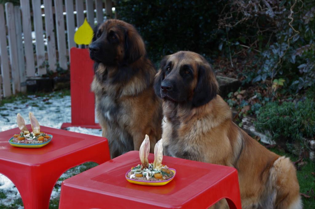 Auch am Geburtstag heißt es warten